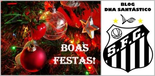 BoasFestasDNA