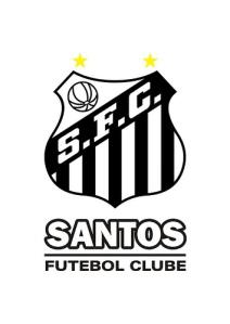 Santos Futebol Clube - Blog DNA Santástico