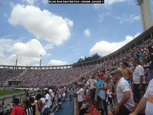 Santos CAMPEÃO Taça São Paulo de Futebol Jr - Blog DNA Santastico  -  023