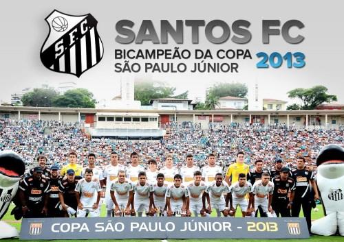 SANTOS FC - BICAMPEÃO - CSPFJR - Blog DNA Santástico